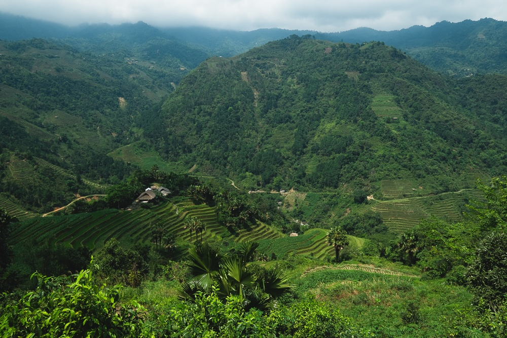 vietnam mountains and homestays
