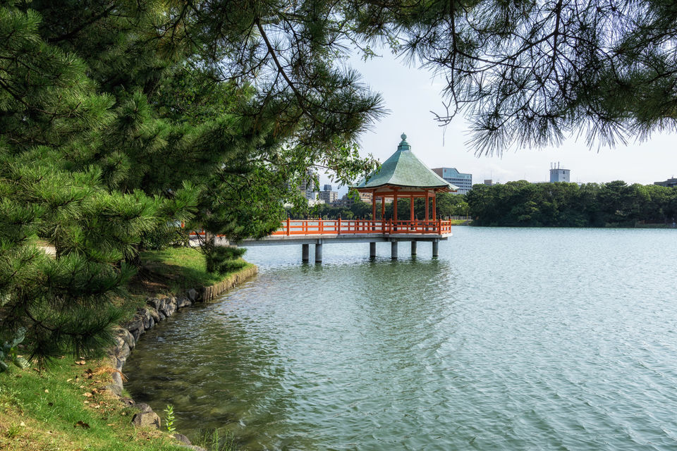 Fukuoka: Personalized Experience with a Local